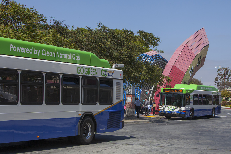 multiple buses