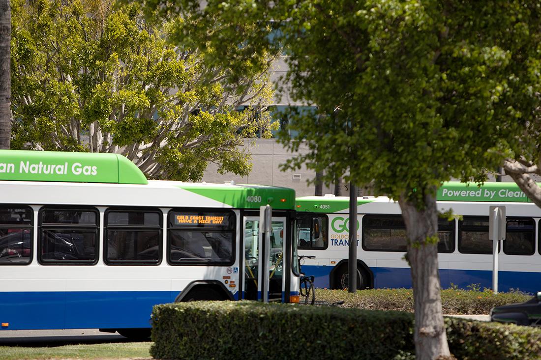 GCTD Buses
